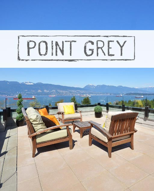 point-gray